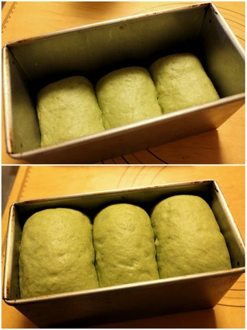 14.03.03ほうれん草チーズ食パン_ホイロ