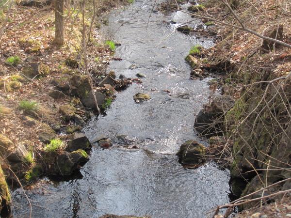 水量豊かな小川