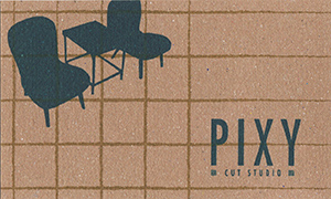 PIXY1.jpg