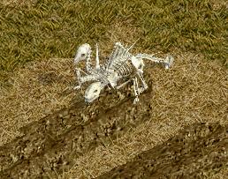 ゼーランディアは犬の魂が骨に乗り移ったアンデットなので