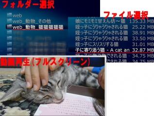 MP_23_WS1003.jpg