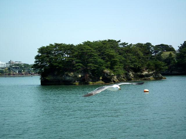 松島の風景(17)