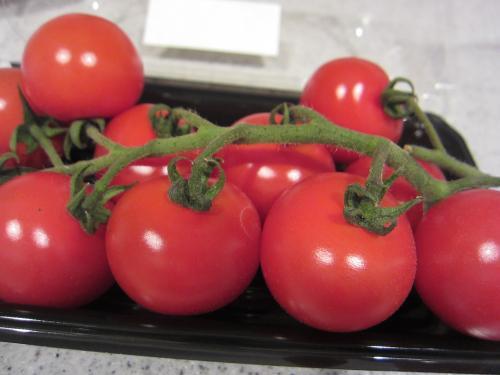 熊本産トマト