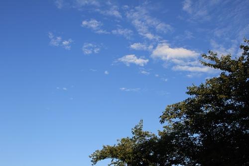 sky-20140803.jpg