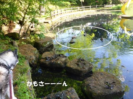 20140502_3.jpg