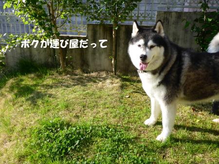 20140502_4.jpg