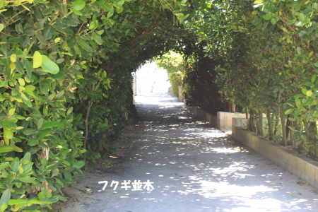 20140528_13.jpg
