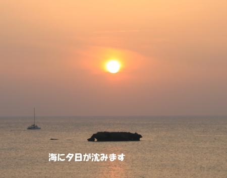 20140528_4.jpg