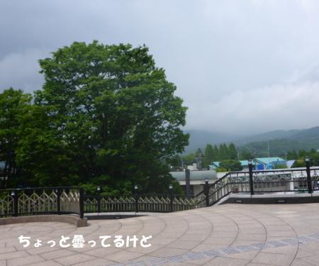 20140620_8.jpg
