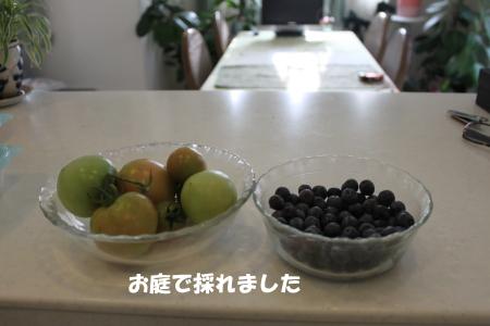 20140727_3.jpg