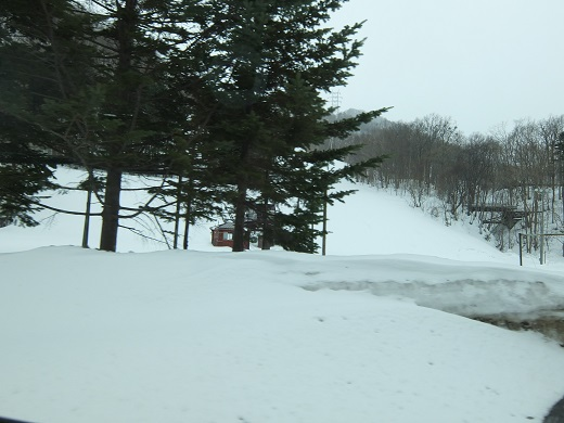 ばんけいスキー場あたり