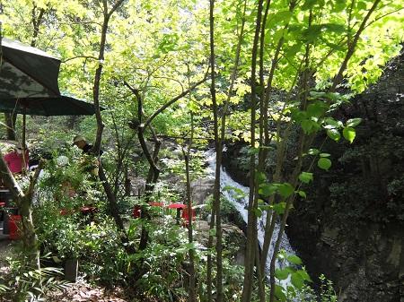 滝カフェ2