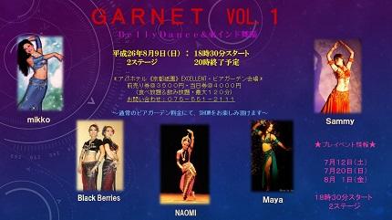 GANET vol1