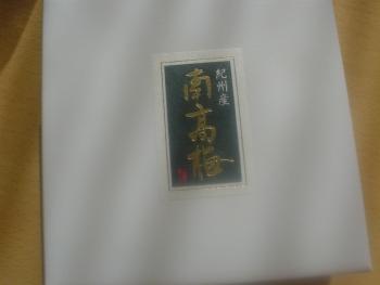 DSC07958.jpg