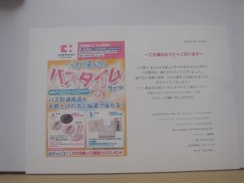 DSC08031.jpg