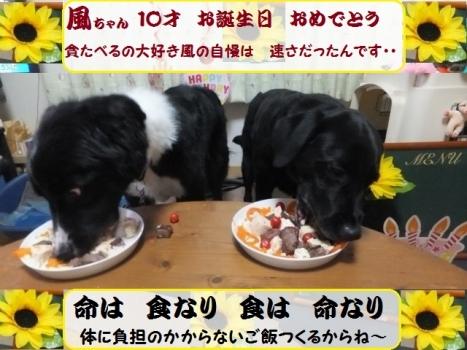 風 10才お誕生日