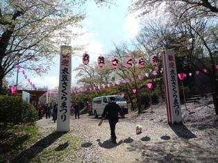 さくら祭(3)