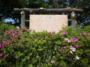 大楠山(2)