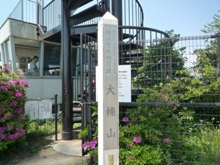 大楠山(3)