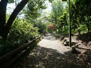 衣笠山公園(1)
