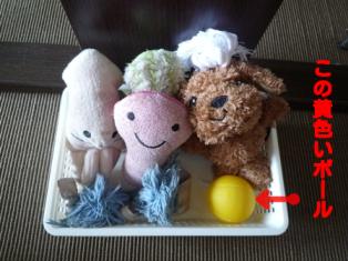 おもちゃ(1)
