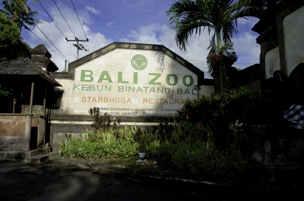 balizoo1.jpg