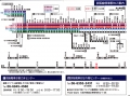KH32_FUJINOMORI_03.jpg