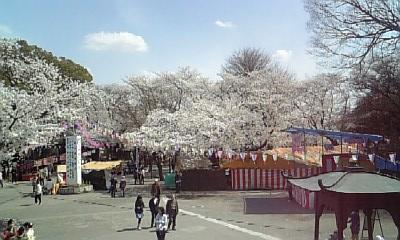 喜多院 (3)