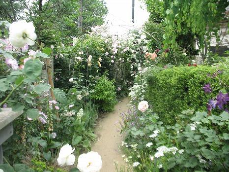 ガーデンカフェ (3)