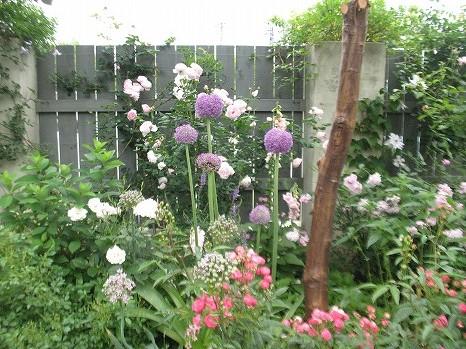 ガーデンカフェ (4)
