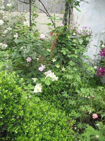 ガーデンカフェ (11)