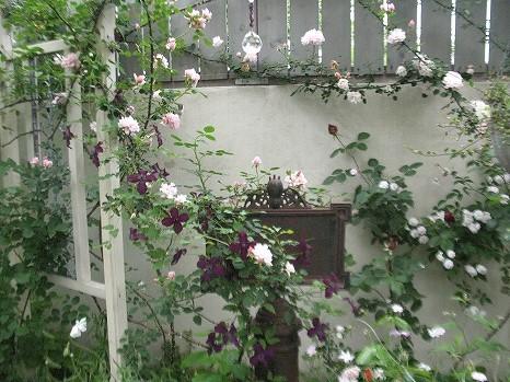 ガーデンカフェ (16)