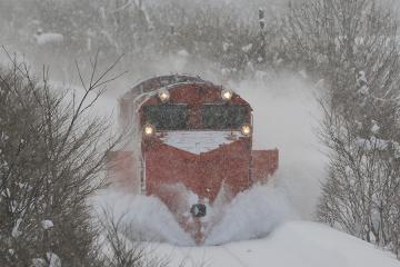 北海道旅行201401(84)