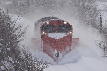 北海道旅行201401(85)