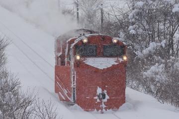 北海道旅行201401(86)