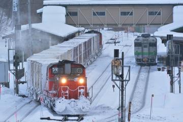 北海道旅行201401(121)