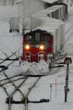 北海道旅行201401(122)