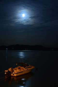月夜の海とバス停(1)