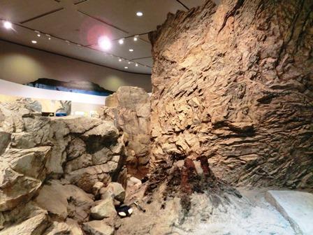 琵琶湖博物館 (6)