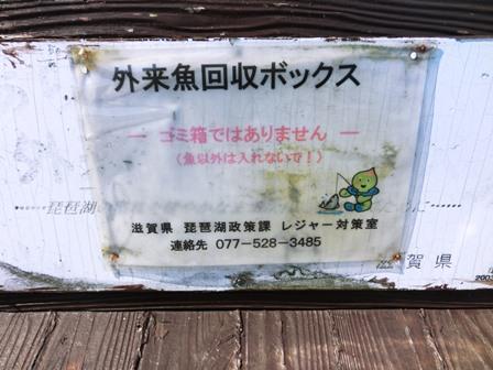 長浜港 (4)