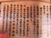 竹生島3 (3)