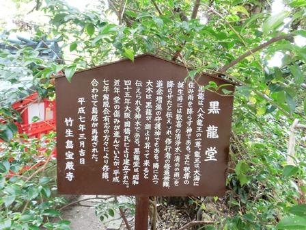 竹生島3 (18)