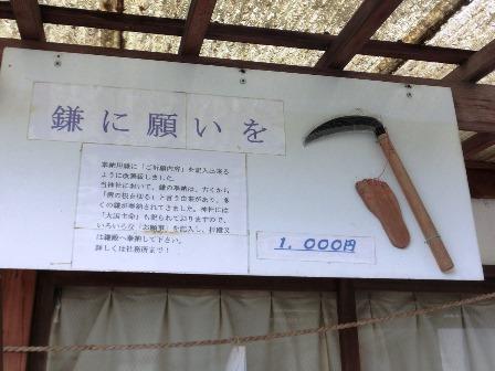 足王 (12)