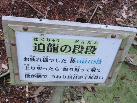 石上布都魂神社3 (5)