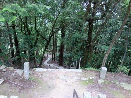 石上布都魂神社3 (18)