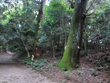 熊山遺跡 (3)