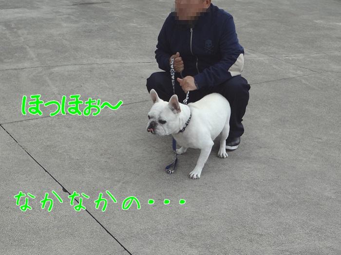 虎太郎と⑤