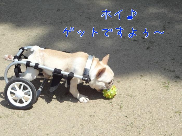ぽっ歩ボール②