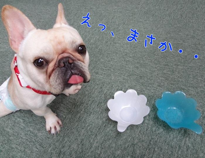 高松祭り⑦