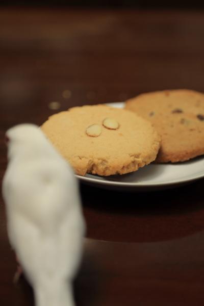 hawaii no omiyage cookies (1)